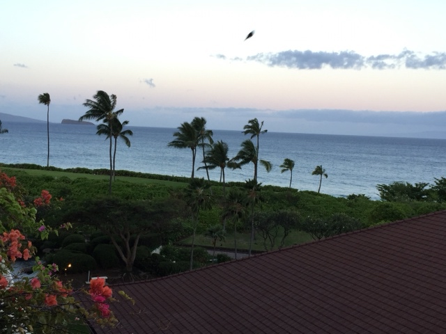 Early morning in Maui